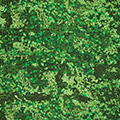 Аналог<br>PENCOTT green zone